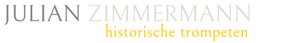 Julian Zimmermann Logo